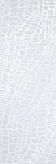 caimanosabbiato-copia