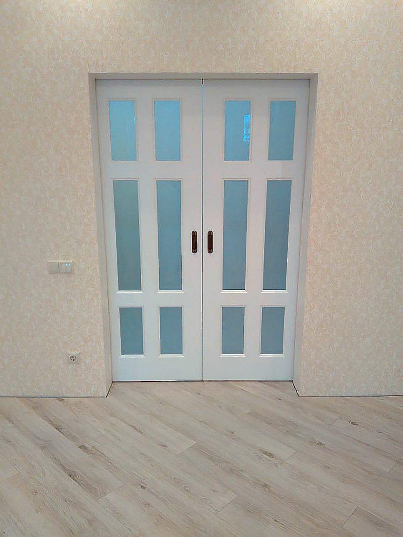 двойная раздвижная дверь фото